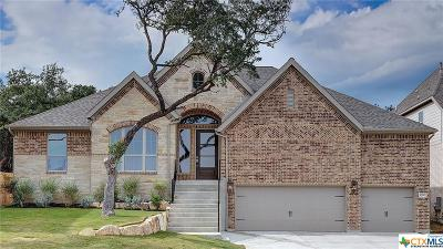 San Antonio Single Family Home For Sale: 25507 River Ledge