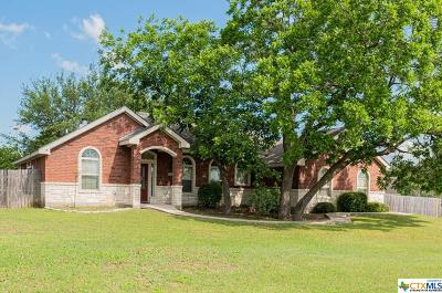 Belton Single Family Home For Sale: 1244 Squire Drive