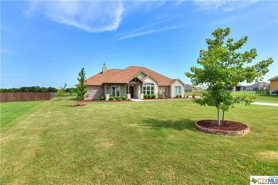 Coryell County, Falls County, McLennan County, Williamson County Single Family Home For Sale: 120 Cavalier Cove