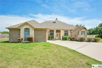 Belton Single Family Home For Sale: 124 Spring Meadow Lane