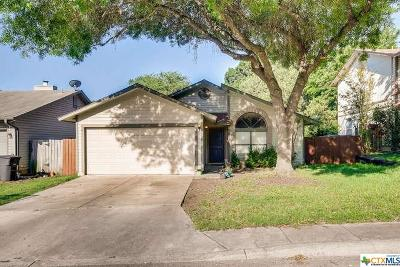 San Antonio Single Family Home For Sale: 17023 Vista Park Drive