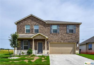 Killeen Single Family Home For Sale: 3205 Shawlands Drive