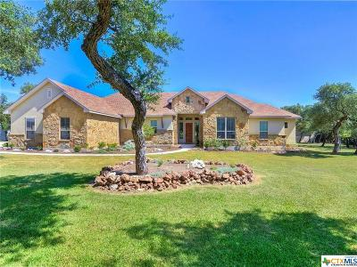 New Braunfels Single Family Home For Sale: 127 Stone Canyon