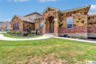 Williamson County Single Family Home For Sale: 105 Stone Water Lane