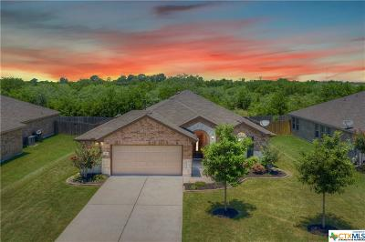 Kyle TX Single Family Home For Sale: $225,000