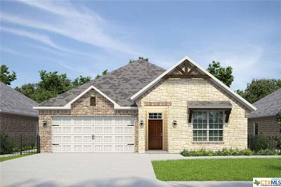 Williamson County Single Family Home For Sale: 1405 Horizon View Drive