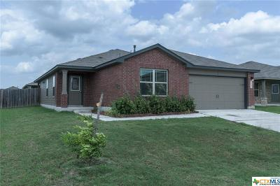New Braunfels Single Family Home For Sale: 2589 Lonesome Creek Trail