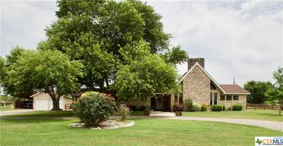 San Marcos Single Family Home For Sale: 131 Park Drive