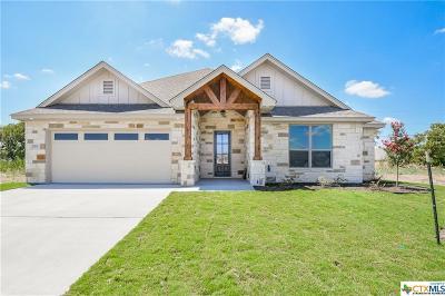 Temple Single Family Home For Sale: 7203 Diamond Dove Drive
