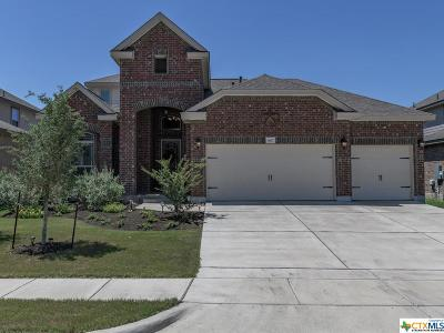 San Marcos Single Family Home For Sale: 3617 Cinkapin Drive