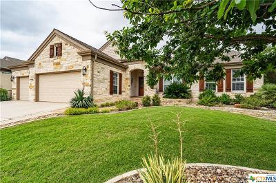 Coryell County, Falls County, McLennan County, Williamson County Single Family Home For Sale: 106 Summer Ridge Lane