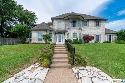 Belton Single Family Home For Sale: 4482 Blue Ridge Drive