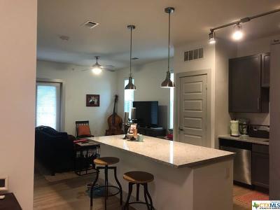 Austin Rental For Rent: 10600 Brezza Lane #511