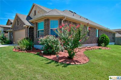 Cibolo Single Family Home For Sale: 273 Cansiglio
