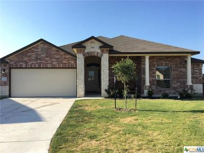 Coryell County Single Family Home For Sale: 1333 Briscoe Court