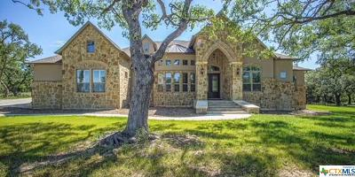 New Braunfels Single Family Home For Sale: 1452 Decanter Drive