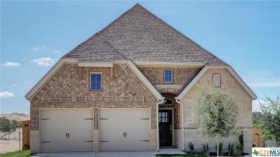 San Antonio Single Family Home For Sale: 2125 Elysian Trail