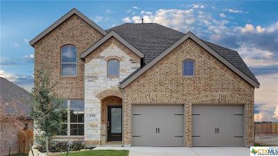 San Antonio Single Family Home For Sale: 2126 Elysian Trail