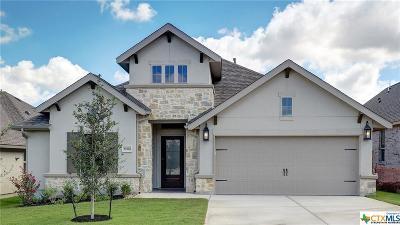 San Antonio Single Family Home For Sale: 28510 Shailene Drive