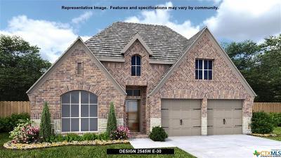 San Antonio Single Family Home For Sale: 28522 Shetland Drive