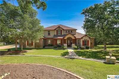 Belton Single Family Home For Sale: 9810 Sendera Drive