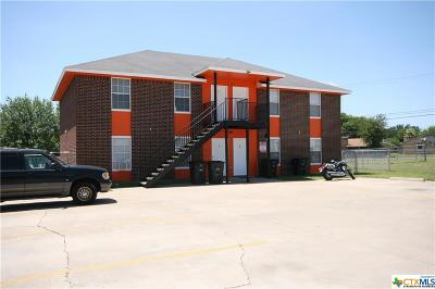 Killeen Multi Family Home For Sale: 1706 Spring Rose Circle