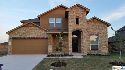 New Braunfels Single Family Home For Sale: 862 Cypress Mill