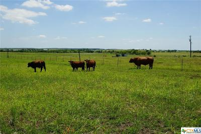 Williamson County Residential Lots & Land For Sale: 00 Fm 972