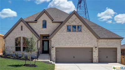 San Antonio Single Family Home For Sale: 1908 Pitcher Bend