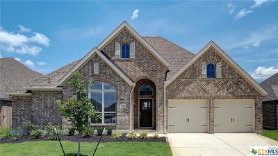 Seguin Single Family Home For Sale: 2961 High Meadow Street