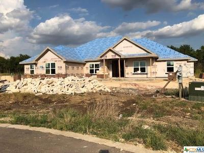 Bell County Single Family Home For Sale: 198 Sand Flat Lane
