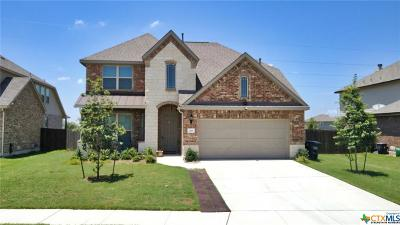 Schertz Single Family Home For Sale: 2969 Winding Trail
