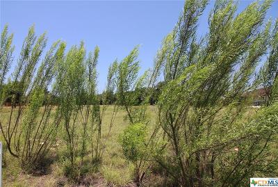 Coryell County Residential Lots & Land For Sale: 297 Skyline Drive