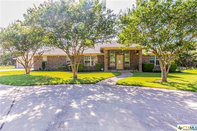 Belton Single Family Home For Sale: 29 Stirrup Drive