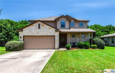 Round Rock Single Family Home For Sale: 2600 Haselwood Lane