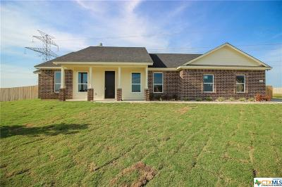 Salado Single Family Home For Sale: 9605 Bozon Hill Court