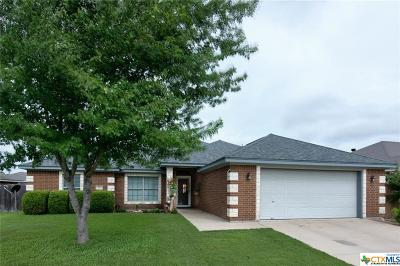 Bell County Single Family Home For Sale: 311 Nolan Ridge Drive