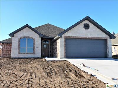 Bell County Single Family Home For Sale: 2518 Inca Dove