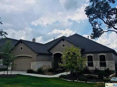San Antonio Single Family Home For Sale: 29019 Gracies Sky