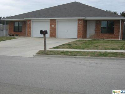 Coryell County Multi Family Home For Sale: 329 Janelle Drive #A-B