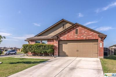 New Braunfels Single Family Home For Sale: 2561 Lonesome Creek Trail