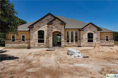 Georgetown Single Family Home For Sale: 10901 Vista Heights Drive