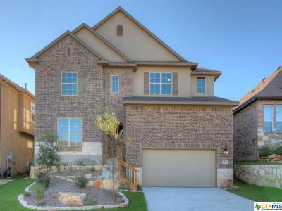 San Antonio Single Family Home For Sale: 28811 Chaffin Light