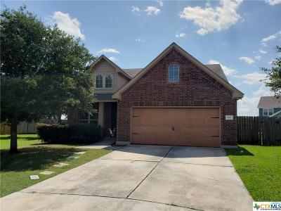 Kyle Single Family Home For Sale: 149 Dropper