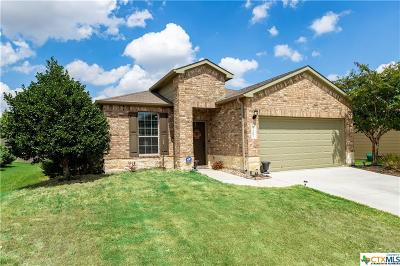 Killeen Single Family Home For Sale: 3107 Shawlands Drive