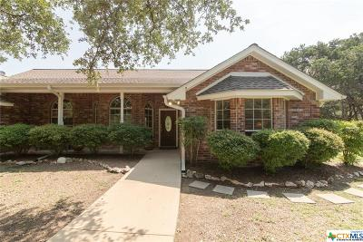 Salado Single Family Home For Sale: 7904 Scenic Lakeview Drive