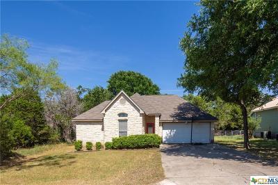 Wimberley Single Family Home For Sale: 1 Rambling Creek Circle