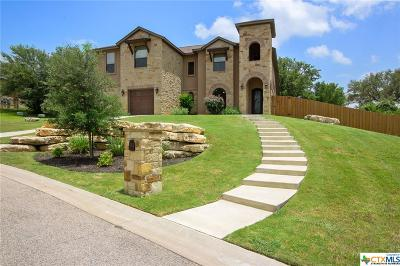 Belton Single Family Home For Sale: 2802 Mystic Mountain Lane