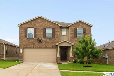 Killeen Single Family Home For Sale: 9112 Sandyford Court