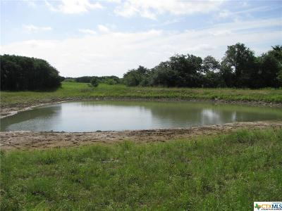 Coryell County Residential Lots & Land For Sale: Tbd County Road 100